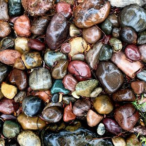 Landscaping rocks after the rain.