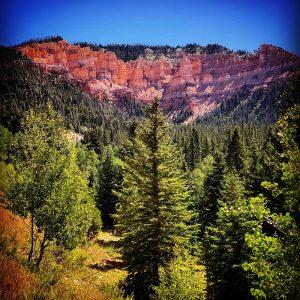 Utah's gorgeous Cedar Mountains.