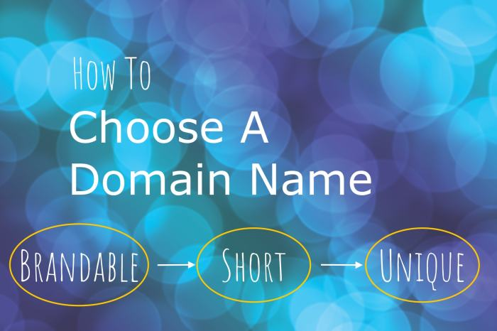 101 Fascinating Facts You Didn't Know About Domain Names