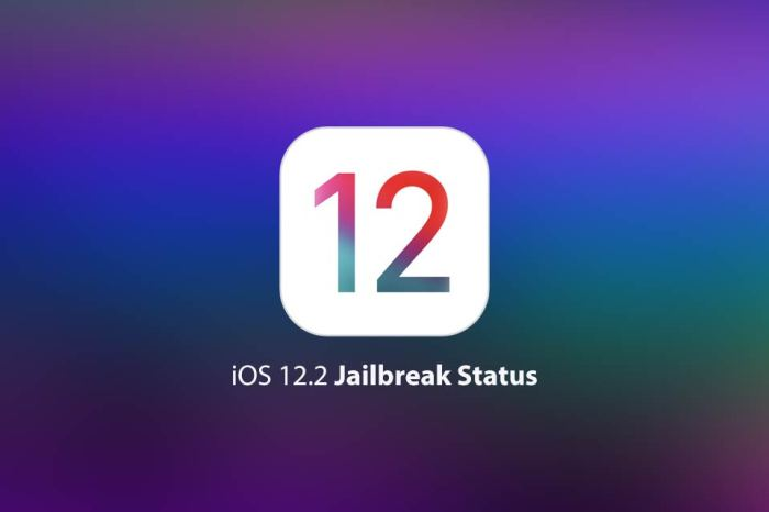 Jailbreak iOS 12 – 12.3.2: How To, Download and Complete Status Update