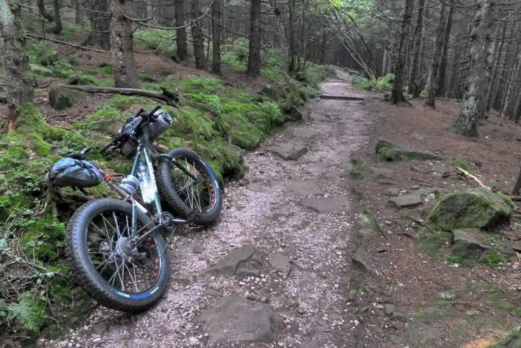 westweg-trail-zwischen-hornisgrinde-und-mummelsee
