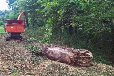 Simon-Cook-Landscaping-Faringdon-13-tree-surgery