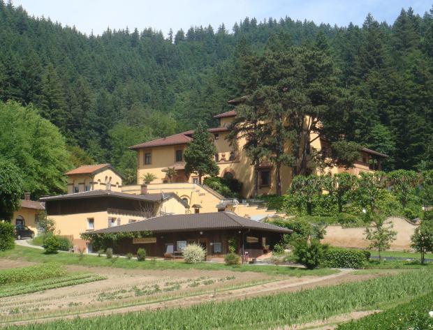 Kloster-Lioba