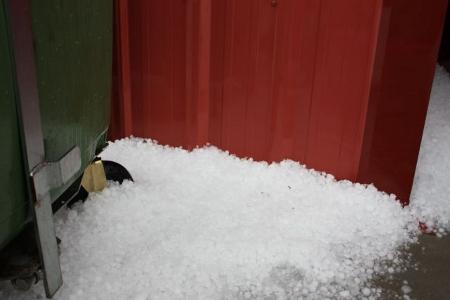 Hailstones at the door
