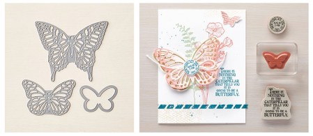 butterflybasics