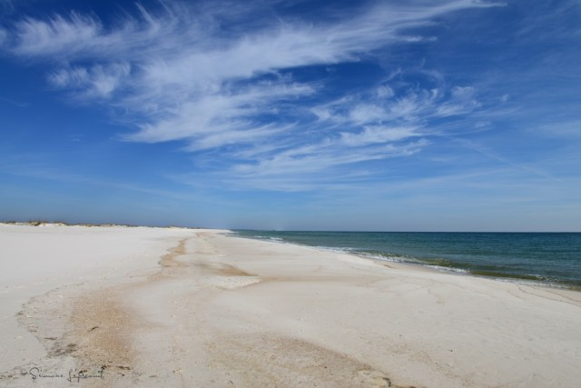 Gulf Islands National Seashore (22)