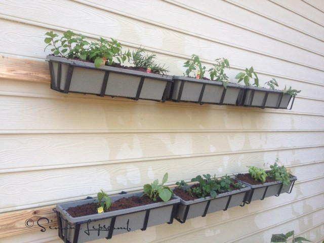 My experimental wall garden..the 2 x 4 will be painted once it is dried