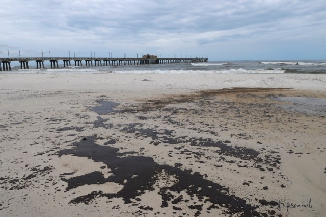 Gulf State Park during 2013 BP Deepwater Horizon Oilspill