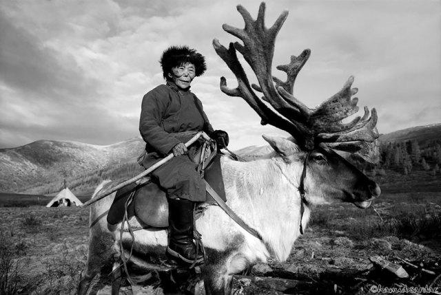 reindeer-people-hamid-sardar-afkhami-2