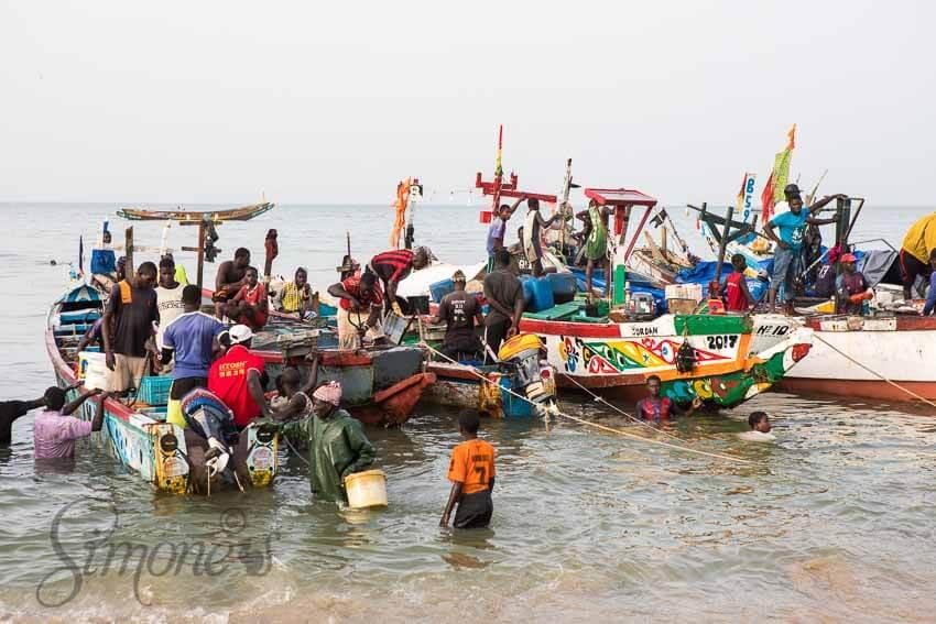 Visafslag Mbour Senegal | simoneskitchen.nl