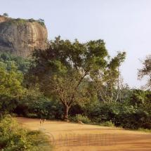 The lion rock, Sri Lanka