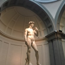 Davide in Galleria dell'Academia Florence