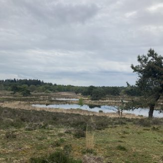 Gennep - Vierlingsbeek