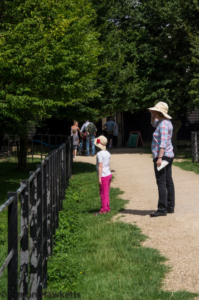 Wimpole Hall in Cambridgeshire pictures - Emma and Jan looking at the animals