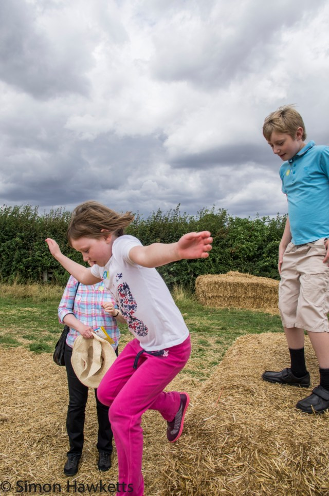 Wimpole Hall in Cambridgeshire pictures - Jumping off