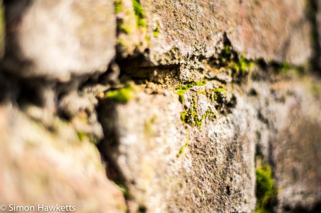 Pentax SMC 50mm f/1.7 prime lens samples - Brick wall in close-up