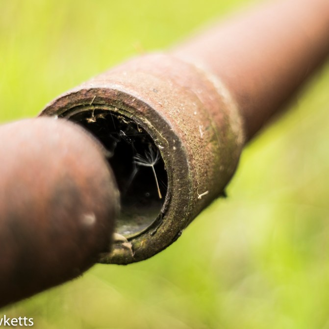 Pentacon electric 50mm f/1.8 sample lightroom processed - Pipes