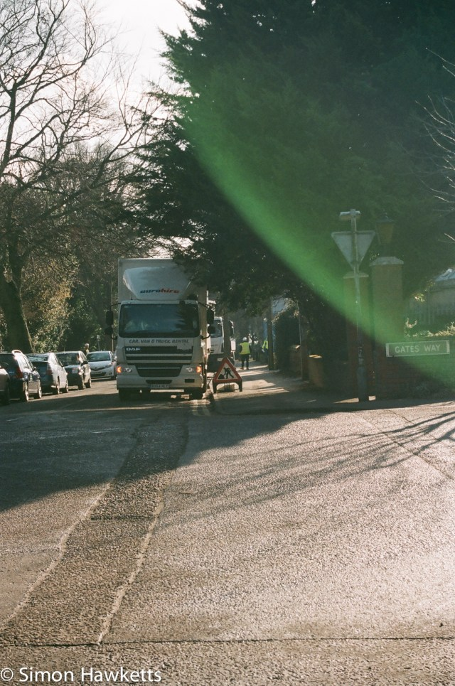 Nikon F80 sample photographs - A bit of sun caught this one