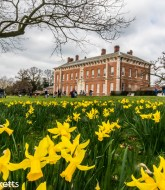 Favourite Pictures - Beningbrough Hall in Yorkshire 1