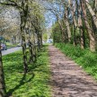 Optomax 35mm f/3.5 sample pictures - Path to nature reserve