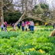Beningborough Hall pictures - The Easter Egg hunt in full swing