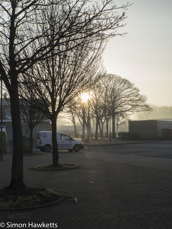Chinon 28mm f/2.8 M42 lens samples - Early sun peeping through the trees