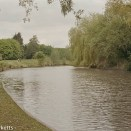 Olympus OM-2 sample pictures - The nature pond at the end of Fairlands