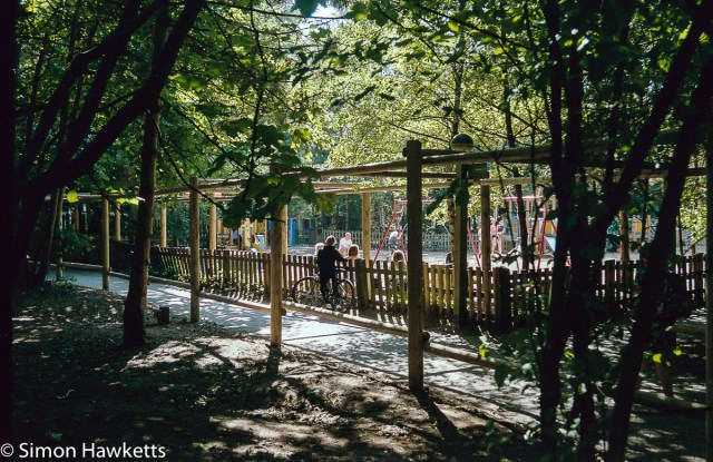Elveden Forest Centerparcs on film - playground in the sunlight