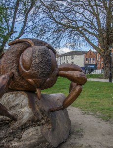 Pentax K5 and Sigma 18 - 125 HSM - Large carved bee by chesterfield church