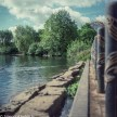 Ciro-Flex TLR sample pictures - The stepping stones at Fairlands