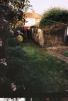 Photos from film found in old cameras - a picture of a back garden lawn