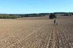 A walk to Sedlescombe Vineyard