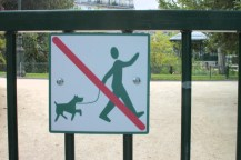 The Parisian dogwalker seems much less upset about being banned. The dog seems to share his optimism.