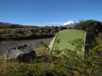 Camping under Cotopaxi