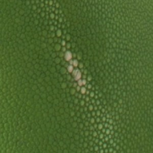 SHAGREEN GREEN
