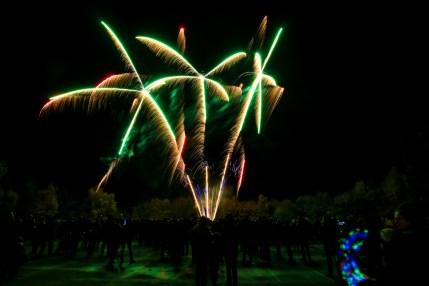 Fireworks 2016 6