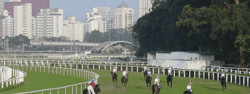 This is a picture of the Jockey Club de São Paulo, a gambling establishments in the Federative Republic of Brazil. On this page, you can read about the legislation, rules, licensing, taxation of of the various forms of games of chance and online gambling in the country, including: poker, bingo, lottery, sports betting, cryptocurrency wagering, and a list of online gambling sites which accept players from Brazil.