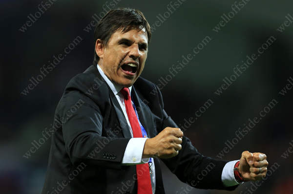 Wales manager Chris Coleman shows his delight