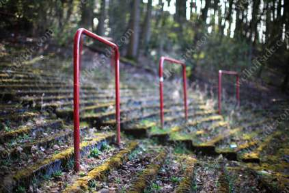 The few remaining railings adorn the overgrown terrace of a forgotten football pitch in Glasgow