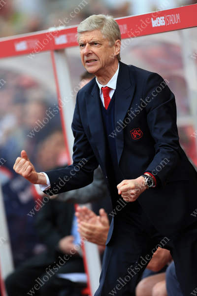 Arsenal manager Arsene Wenger celebrates his side's 1st goal against Stoke