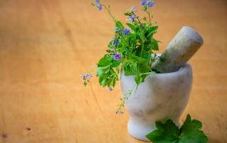 Holistic Medicine | St. Petersburg | Simon Wellness Consulting