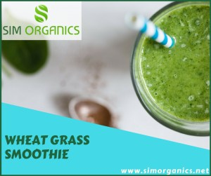 Simple Wheat grass smoothie