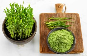 Health Benefits Of Wheat Grass Powder