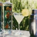 Powder Rum and Class V Vodka
