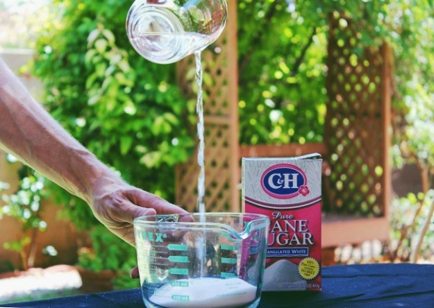 making simple syrup