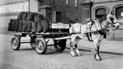 Right. So you're telling me that after 100 years of impovement, you need more power to clean your carpet than this guy needed to haul tons of coal? Ain't progress marvellous, and don't spare the horses...