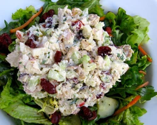 Healthy Chicken Salad with Apples and Cranberries