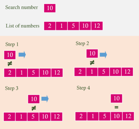 Linear Search in C