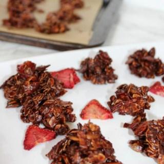 Dark Chocolate Strawberry Granola Bites