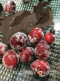 frosted-cranberries-with-chocolate